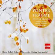 Winter_traeume